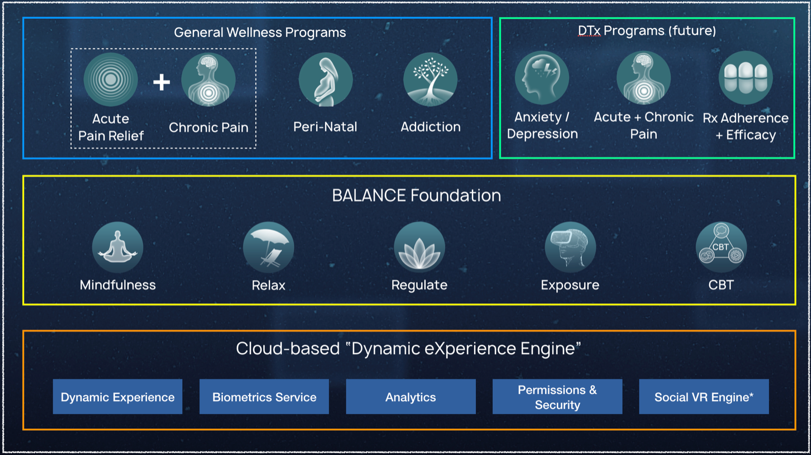 BehaVR Balance software offers a variety of options for pain management in VR, including chronic pain management