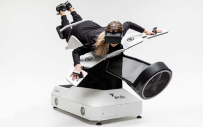 Fulfilling the Dream of Human Flight with Virtual Reality