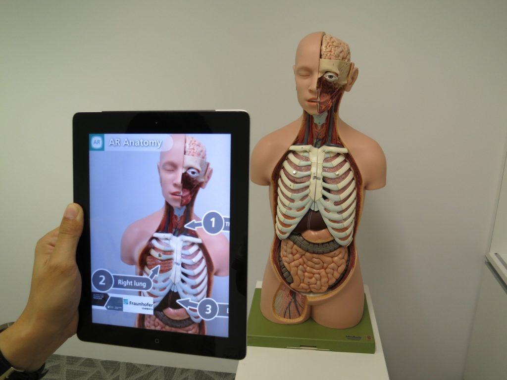 AR learning experience - AR anatomy