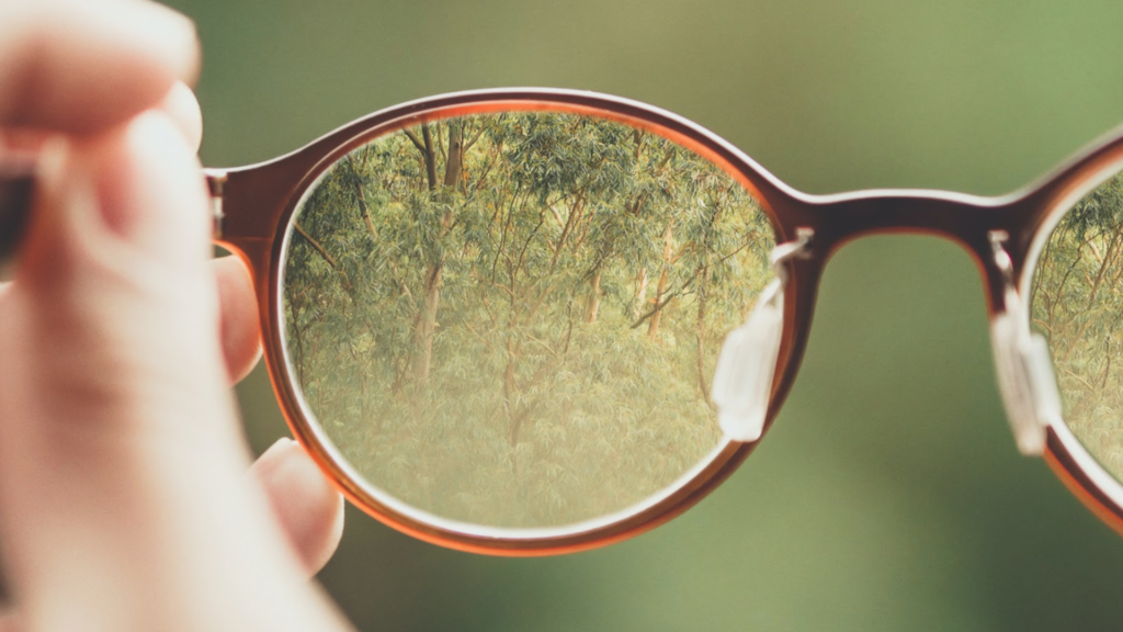 A forest view through glasses as a glimpse to possibilities of extended reality